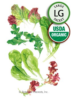 Baby Greens Snappy Fresh Mesclun Organic Seeds (LG)